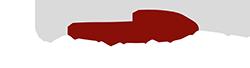 Raid Systems Logo